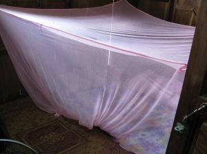 Mosquito net surrounding my bed.  Note the gecko poop on the top.