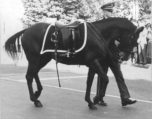 Riderless horse, JFK funeral procession