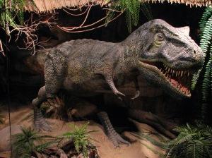 """Tyrannosaurus-01-ZOO.Dvur.Kralove"" by Mistvan - Own work. Licensed under Creative Commons Attribution-Share Alike 3.0-2.5-2.0-1.0 via Wikimedia Commons - http://commons.wikimedia.org/wiki/File:Tyrannosaurus-01-ZOO.Dvur.Kralove.jpg#mediaviewer/File:Tyrannosaurus-01-ZOO.Dvur.Kralove.jpg"